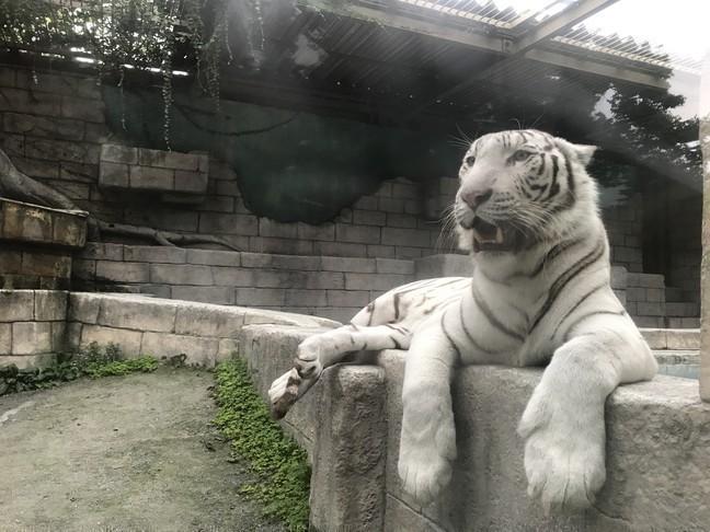 東武動物公園2.JPG