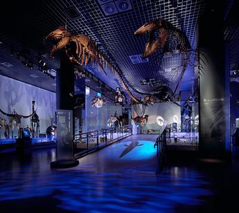 博物館バナー2.jpg
