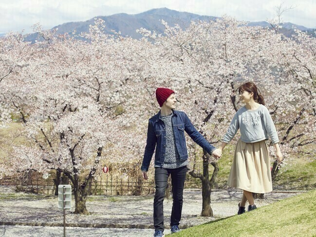 新宿御苑桜2.jpg